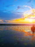 Dramatic sunset over the lake Royalty Free Stock Image