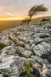 Dramatic Sunset Over Limestone Pavements Of Twistleton Scar In North Yorkshire, UK. Stock Photo