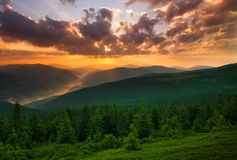 Free Dramatic Sunset Over Mountains And Green Pine Forest Stock Photos - 111800263
