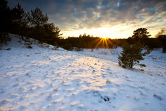 Sunset over winter hill in Veluwe Stock Images