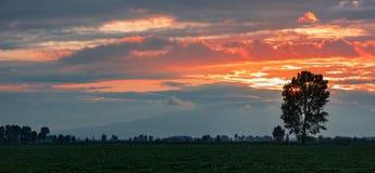 Dramatic sunset panorama Royalty Free Stock Images