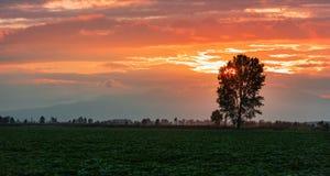 Dramatic sunset panorama Stock Images