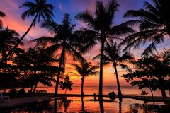 Dramatic Sunset with silhouettes palm in Thailand. Dramatic Sunset with silhouettes palm and reflection in swimming pool Royalty Free Stock Photography