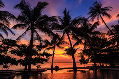 Dramatic Sunset with silhouettes palm in Thailand. Dramatic Sunset with silhouettes palm and reflection in swimming pool Royalty Free Stock Image