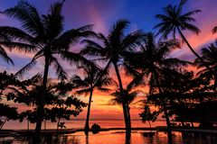 Dramatic Sunset with silhouettes palm in Thailand. Dramatic Sunset with silhouettes palm and reflection in swimming pool Stock Photography