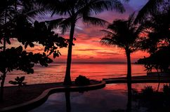 Dramatic Sunset with silhouettes palm in Thailand. Dramatic Sunset with silhouettes palm and reflection in swimming pool Stock Photo