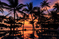 Dramatic Sunset with silhuettes palm in Thailand Royalty Free Stock Photos
