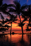 Dramatic Sunset with silhuettes palm in Thailand Royalty Free Stock Images