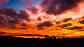 Dramatic sunset sky and forest silhouette royalty free stock photo