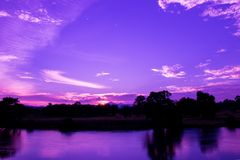 Dramatic sunset in sky and reflect river beautiful colorful tone blue- purple landscape silhouette tree woodland twilight time wit. H copy space add text royalty free stock photo