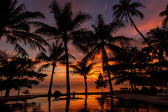 Dramatic Sunset in Thailand, Samui Royalty Free Stock Image