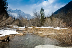 Dramatic thaw Royalty Free Stock Photography