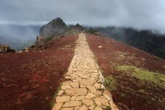 Dramatic trail Madeira stock image