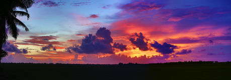 Dramatic Tropical Sunset | Panorama stock image