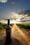 Dramatic vineyard. Wine bottle against a vineyard Royalty Free Stock Photography