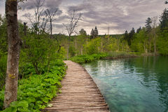 Dramatic wildness view in Plitvice National Park, Croatia. Dramatic wildness view of pathway and crystal clear water lake in Plitvice National Park, Croatia Stock Image