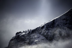 Dramatic Winter Clouds and Crystalline Alpine Snow in Colorado. Dwarfed by the mountain a sky, pine trees cling to a rugged mountainside outside of Telluride Royalty Free Stock Images