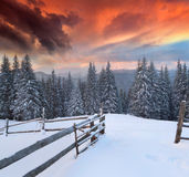 Dramatic winter landscape Royalty Free Stock Image