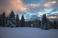 Dramatic winter landscape in the mountains Royalty Free Stock Images