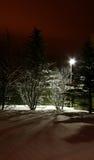 Dramatic winter night Stock Photography