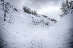 Dramatic winter snow landscape forest snow on branches vignetting hdr photo. Dramatic winter snow landscape forest snow on branches vignetting hdr stock photography