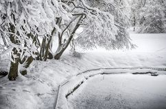 Dramatic winter snow landscape forest snow on branches vignetting hdr photo. Dramatic winter snow landscape forest snow on branches vignetting hdr royalty free stock photography