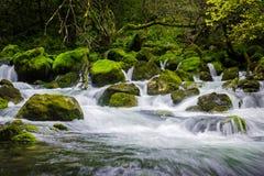 Dramaticlly流动的河通过做小瀑布瀑布的岩石 免版税库存图片