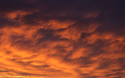 Dramatics sky. During the golden sunset Royalty Free Stock Images
