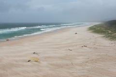 Dramatisch die landschap van strand door wind wordt geveegd stock afbeelding