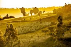 Dramatisch Ethiopisch landschap Stock Afbeeldingen