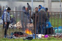 Dramatische beelden van de Sloveense vluchtelingscrisis Stock Afbeeldingen