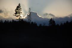 Dramatische bos en wolkensilhouetten Stock Afbeeldingen