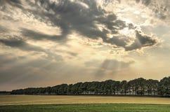 Dramatische hemel over de polder Stock Afbeeldingen