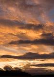 Dramatische peachy zonsonderganghemel over een treeline stock fotografie