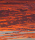 Dramatische rode hemel Stock Foto's