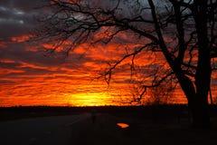 Dramatische rode zonsondergang Stock Foto