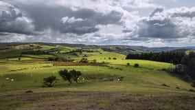 Dramatische Wolken over Toneelhilly countryside fields in het UK stock video