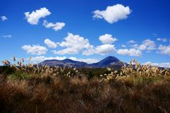 Dramatisk bergliggande - Tongariro Crossing Arkivbild