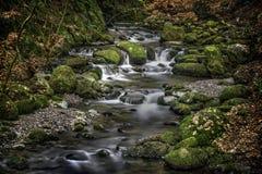 Dramatisk flod, Alva Glen Scotland Royaltyfri Bild