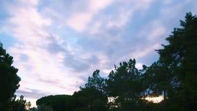 Dramatisk himmeltidschackningsperiod lager videofilmer