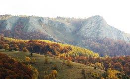 Dramatisk höst i rumänska berg Fotografering för Bildbyråer
