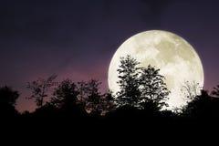 Dramatisk och härlig stor måne på natthimmel Arkivfoton