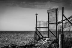 Dramatisk sjösidaplats med trådstaketet Royaltyfri Bild