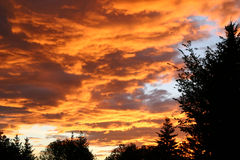dramatisk sky 2 Royaltyfri Fotografi