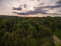 Dramatisk solnedgång över grön skog arkivbilder