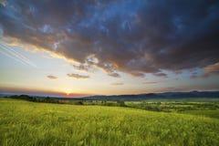 Dramatisk solnedgång över grönt fält Arkivfoto