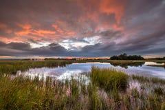 Dramatisk solnedgång över marsklan i naturligt landskap arkivbilder