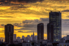 Dramatisk solnedgång över Tokyo, Japan royaltyfria foton