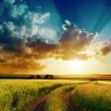 Dramatisk solnedgång över vägen i grönt fält Royaltyfria Foton