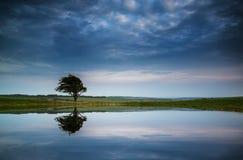 Dramatisk stormig himmel reflekterade i landskap för daggdammbygd Arkivfoton